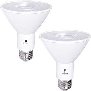 2 Pack PAR30 LED Flood Light Bulb 12W 75 Watt Equivalent 800 Lumens Waterproof E26 3000K Warm White Super Bright LED Flood Light Bulbs for Security, Garage Led Spotlight Bulb Led Recessed Light Bulbs