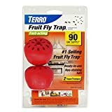 Woodstream TERRO Fruit Fly Trap - 2 Pack VAR