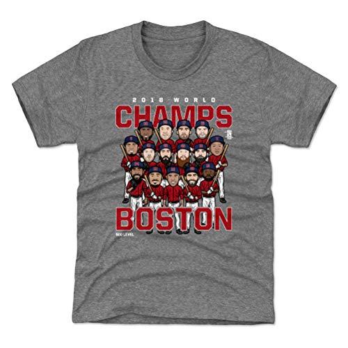 - 500 LEVEL Boston Red Sox World Series Youth Shirt - Kids Medium (8Y) Tri Gray - Boston Baseball 2018 World Champs WHT