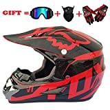 Dirt Bike Helmets Review and Comparison