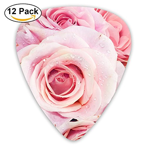 12-pack Fashion Classic Electric Guitar Picks Plectrums Pastel Roses Pink Picture Instrument Standard Bass Guitarist ()