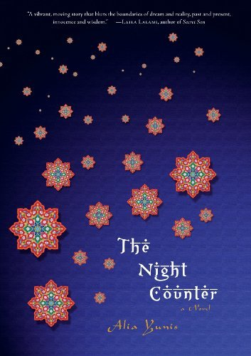 The Night Counter: A Novel cover