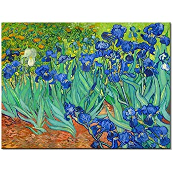 Wieco Art Irises Canvas Print Wall Art by Van Gogh Famous Flowers Oil Paintings Reproduction Large Gallery Wrapped Floral Pictures Flowers Giclee Artwork for Dining Room Home Office Decorations