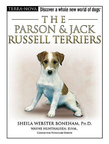 Parson Jack Russell Terrier - The Parson & Jack Russell Terriers (Terra-Nova)