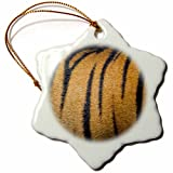 3dRose Danita Delimont - Patterns - India. Male Bengal tiger skin showing the stripes. - 3 inch Snowflake Porcelain Ornament (orn_276782_1)