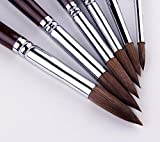 Artist Paint Brushes-Superior Sable Hair Artists