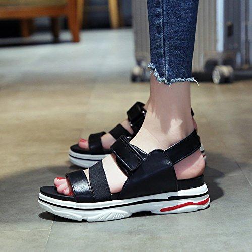 QQWWEERRTT Sandalias de Moda Femenina Verano nuevos Estudiantes universales Zapatos de Plataforma gradiente Femenino con Sandalias Romanas Casuales,35,Púrpura negro