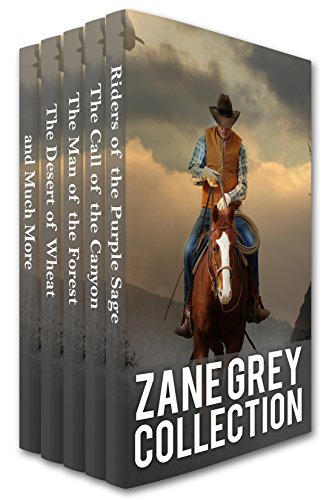 Canyon Sage - Zane Grey Collection: Riders of the Purple Sage, The Call of the Canyon, The Man of the Forest, The Desert of Wheat and Much More (Xist Classics)