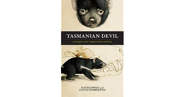 Tasmanian devil. A unique and threatened animal