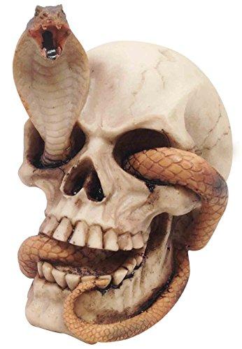 Ebros Cranium Skeleton Cobra Snake Habitat Skull Statue Gothic Graveyard Death Figurine Sculpture 4.25