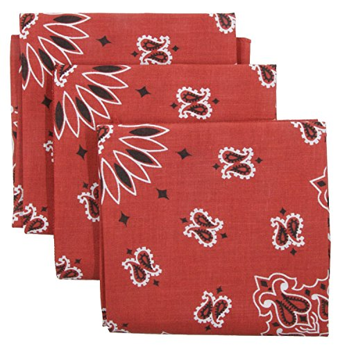 Bandana 3-Pack - Made in USA For 70 Years - Sold by Vets – 100% Cotton –Sewn Edges (Terracotta 3 Pack)