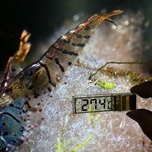 Hrph Multi-funcional 3D LCD digital electr/ónica de medici/ón de la temperatura del tanque de peces de temperatura Medidor del term/ómetro del acuario(Color aleatorio)