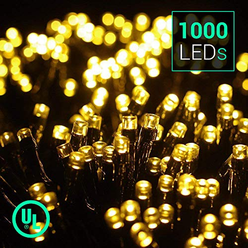 1000 Led Christmas Lights