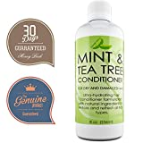 dandruff hair conditioner - Hydrating Conditioner Mint & Tea Tree Oil For Dry and Damaged Hair With Nutrient Rich Jojoba Tea Tree Lavender for Moisturized Shiny Strong & Rejuvenated Hair for Women Men Teens by Honeydew 8 oz