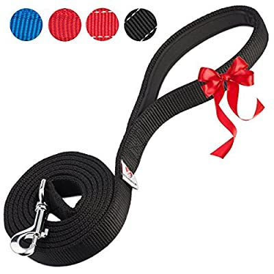 PetsLovers Premium Dog Leash - Heavy Duty Strap, Padded Handle, Ambient Colors - 6 Feet Long, 1 Inch Wide