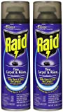 Raid Flea Spray Review and Comparison