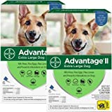 12 Month Advantage II Flea Control Blue