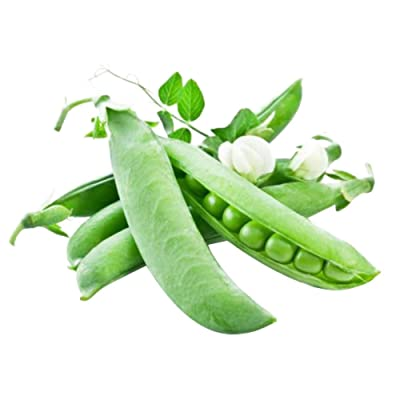 Pea Seeds for Yard Gardening Plant Delicious Pea 20 Seeds : Garden & Outdoor
