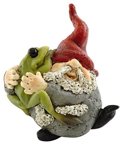 Top Collection Miniature Fairy Garden and Terrarium Gnome Hugging Frog Figurine