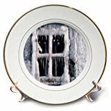 3dRose TDSwhite – Winter Seasonal Nature Photos - Snowed In Window - 8 inch Porcelain Plate (cp_284914_1)