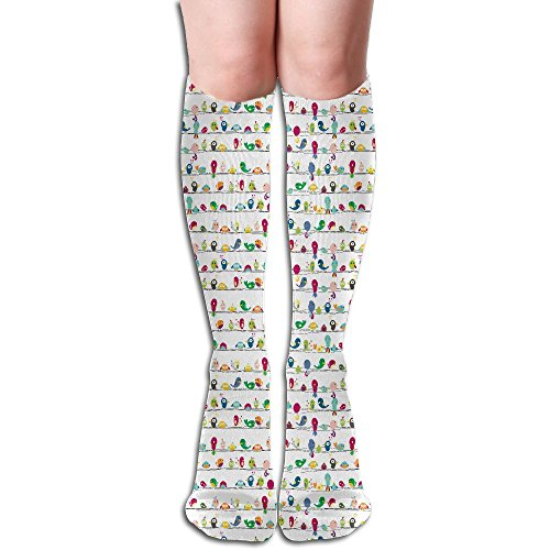 Colorful Nice Birds Stave Below The Knee High Socks Sports Athletic Casual Tube