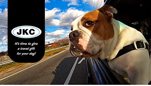 JKC Cintura di Sicurezza per Animali da Compagnia per Cani e Gatti in Nylon Cintura di Sicurezza per Auto con Catena per Animali da Compagnia con Bussola Elastica Cinghie Domestici per posti Auto