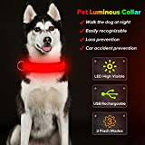 BSEEN LED Dog Collar, USB Rechargeable& Adjustable Glow in The Dark...