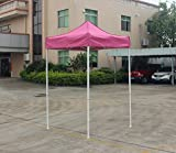 American Phoenix Canopy Tent 5×5 feet Party Tent [White Frame] Gazebo Canopy Commercial Fair Shelter Car Shelter Wedding Party Easy Pop Up (Pink)