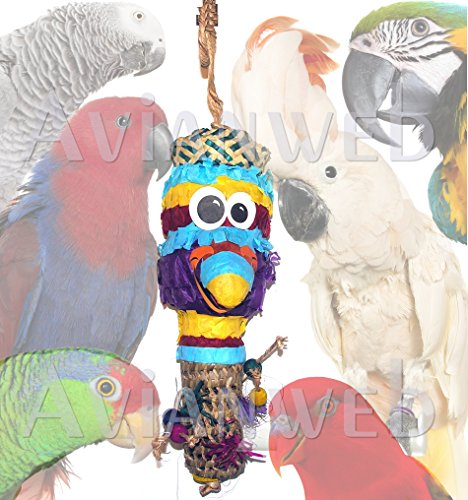 Avianweb Foraging Basket Bird Toy Pinata (Parrot)]()