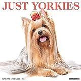 Just Yorkies 2022 Wall Calendar (Dog Breed)