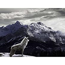 Wolf in the Mountains - Wildlife Animal Art Print Poster Wall Decor Home Decor(40x30inches)