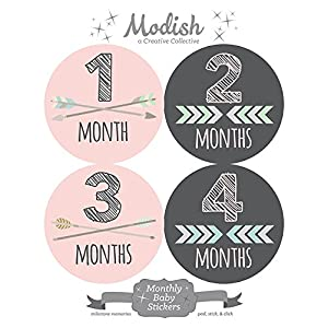 12 Monthly Baby Stickers, Pink, Gray, Tribal, Arrows, Chevron, Baby Month Stickers Girl, Baby Book Keepsake, Baby Shower Gift 6