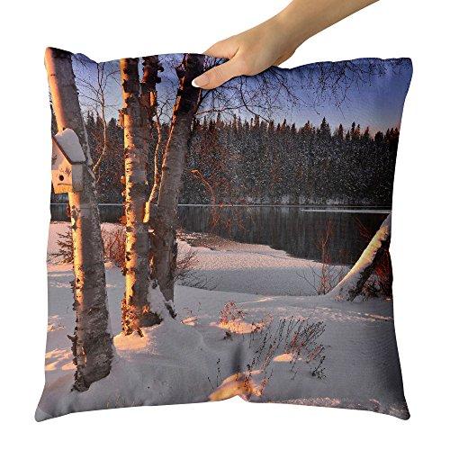 Outdoor Chair Alder (Westlake Art - Birch Branch - Decorative Throw Pillow Cushion - Picture Photography Artwork Home Decor Living Room - 18x18 Inch (5361B))