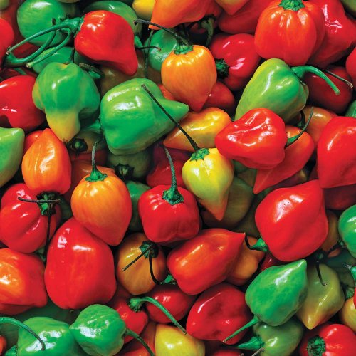 Springbok Puzzles - Hot Peppers - 500 Piece Jigsaw Puzzle - Large 20 Inches by 20 Inches Puzzle - Made in USA - Unique Cut Interlocking Pieces