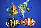 Salty Pelican Realistic Colorful Fish Wall Decor Kids Bathroom Ocean Decor, 6 inch, Bundle 4 Fish