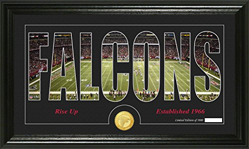 Nfl Atlanta Falcons  Silhouette  Panoramic Photo Minted Coin  21  X 14  X 3   Bronze