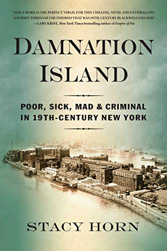 Book Cover: Damnation Island: Poor, Sick, Mad, and Criminal in 19th-Century New York by Stacy Horn