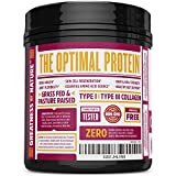 Collagen Peptides Hydrolyzed Protein Powder 18oz - Supplement For Vital Joint & Bone Support, Glowing Skin, Strong Hair & Nails, Digestive Health - Unflavored, Hormone-Free, Grass Fed & Pasture Raised