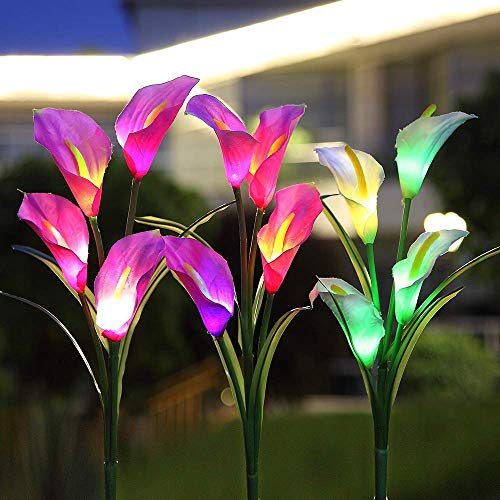 Quality Solar Garden Lights in US - 2