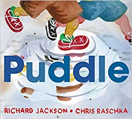 Image result for puddle raschka amazon