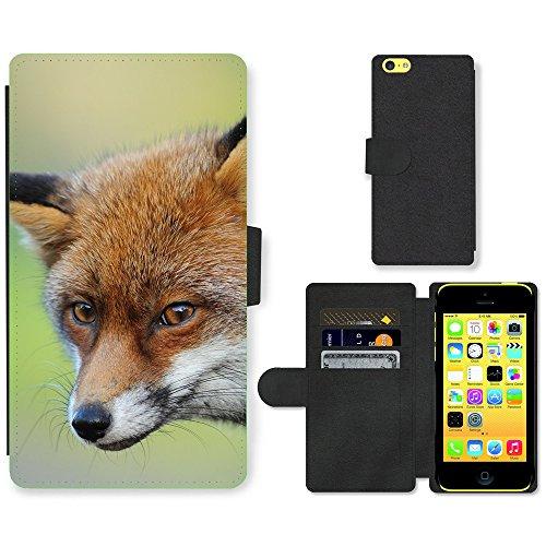PU Leder Wallet Case Folio Schutzhülle // F00007726 Fuchs // Apple iPhone 5C