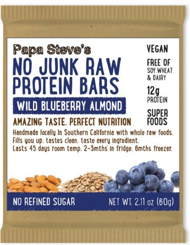 Papa Steve's No Junk Raw Vegan Protein Bars: Non GMO, Gluten Free, 100% Natural, Hand-Made Weekly – Wild Blueberry Almond (Pack of 10)