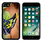 MSD Premium Apple iPhone 7 Aluminum Backplate Bumper Snap Case iPhone7 IMAGE ID 34571985 poison dart frog Dendrobates tinctorius from the Amazon rain forest near the border of Suriname and