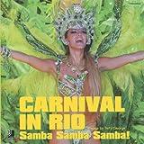 Carnival in Rio, , 3937406387
