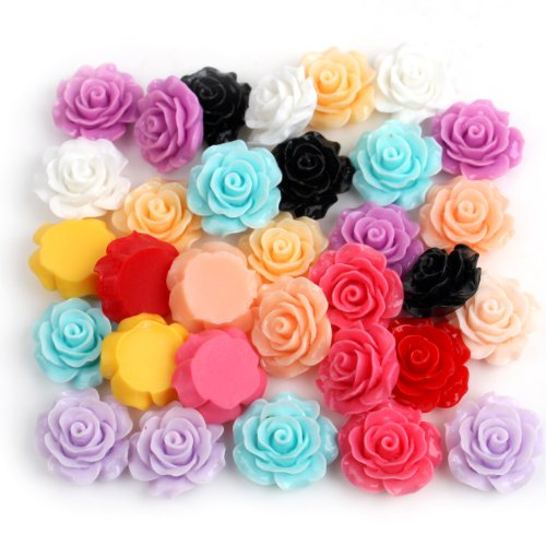 Dr.Luck 55Pcs DIY Mixed Lots Resin Rose Flowers Cabochons Cameo Flat Back 18x9mm (Random)