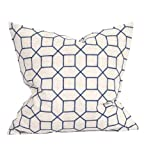 Howard Elliot 2-598F 20 x 20 in. Davida Kay Trellis Indigo Pillows - Down Insert