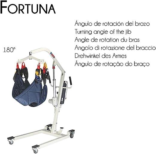 Grúa eléctrica, 135 kg, Arnés Incluido, Fortuna, Mobiclinic ...