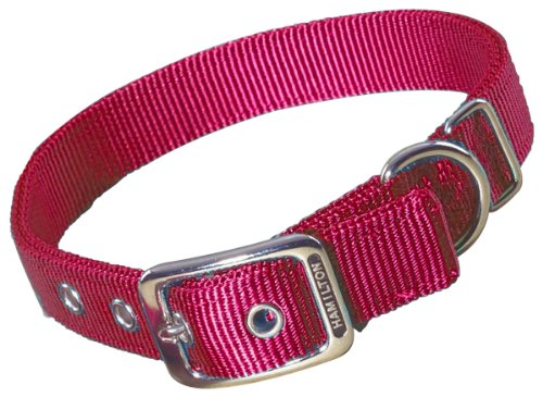 Hamilton Double Thick Nylon Deluxe Dog Collar, 1-Inch by 18-Inch, Red
