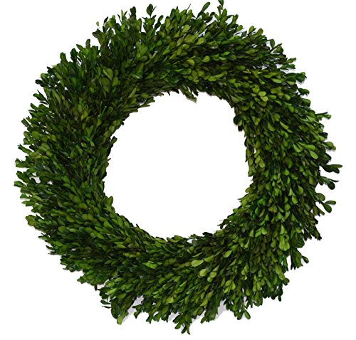 (17 Inch Real Boxwood Wreath-)