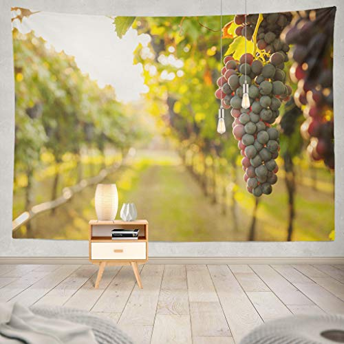 KJONG Grape Harvest Vineyard Winery Grape Wine Landscape, used for sale  Delivered anywhere in Canada